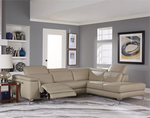 Cinque Taupe Leather Sectional,8256 homelegance
