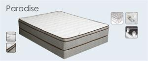 Paradise Euro Pillow Top Mattress by Maxim Mattress